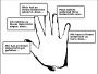 methoden:hand-evaluation.png